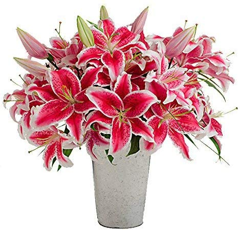 Stargazer Barn - Large Bouquet of Stargazer Lilies with Galvanized French Bucket Style Vase - Farm Fresh