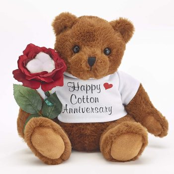 JustPaperRoses Teddy Bear with Cotton Rose Gift