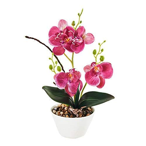 Imiee Silk Flowers with Pot 31cm in Height Artificial Orchid Phalaenopsis Arrangement Flower Bonsai with Vase for Room Table Centerpieces-H:12""