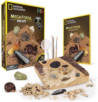 Mega Fossil Dig Kit