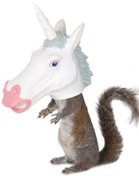 Accoutrements LLC Squirrel Feeder