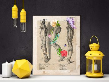 Anatomy Leg Muscle Canvas Wall Art for Doctor