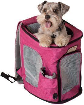 Armarkat cat Backpack for girls
