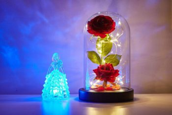 Beauty and the Beast Rose and Forever Rose gifts