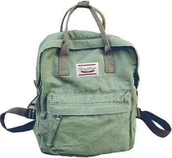 Canvas Women's Backpack or Handbag Purse