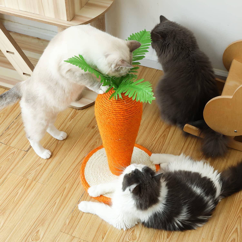 Cat scratching activity tree