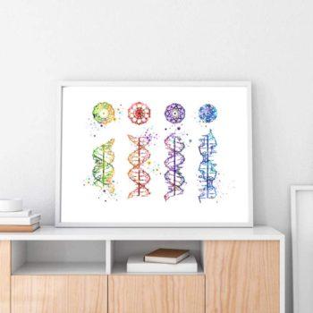DNA Helix Art Prints