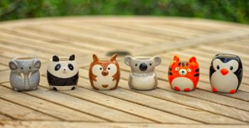Garden Animal Ceramic Succulent Planters