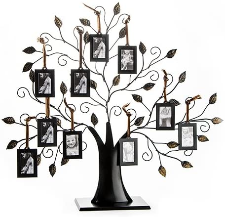 6. Klikel Family Tree Picture Frame Display