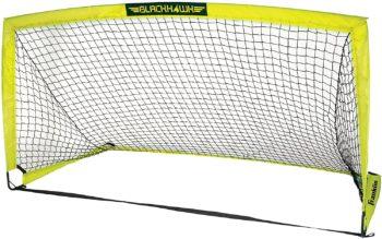 Portable goal net