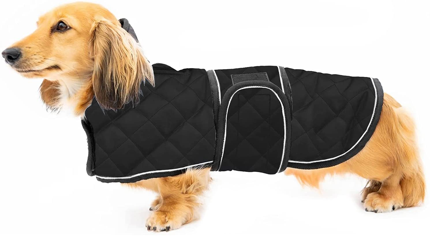 8. Quilted Dachshund Coat