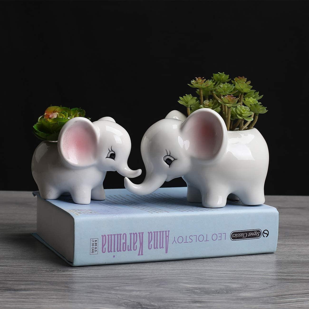7. Succulent Pots