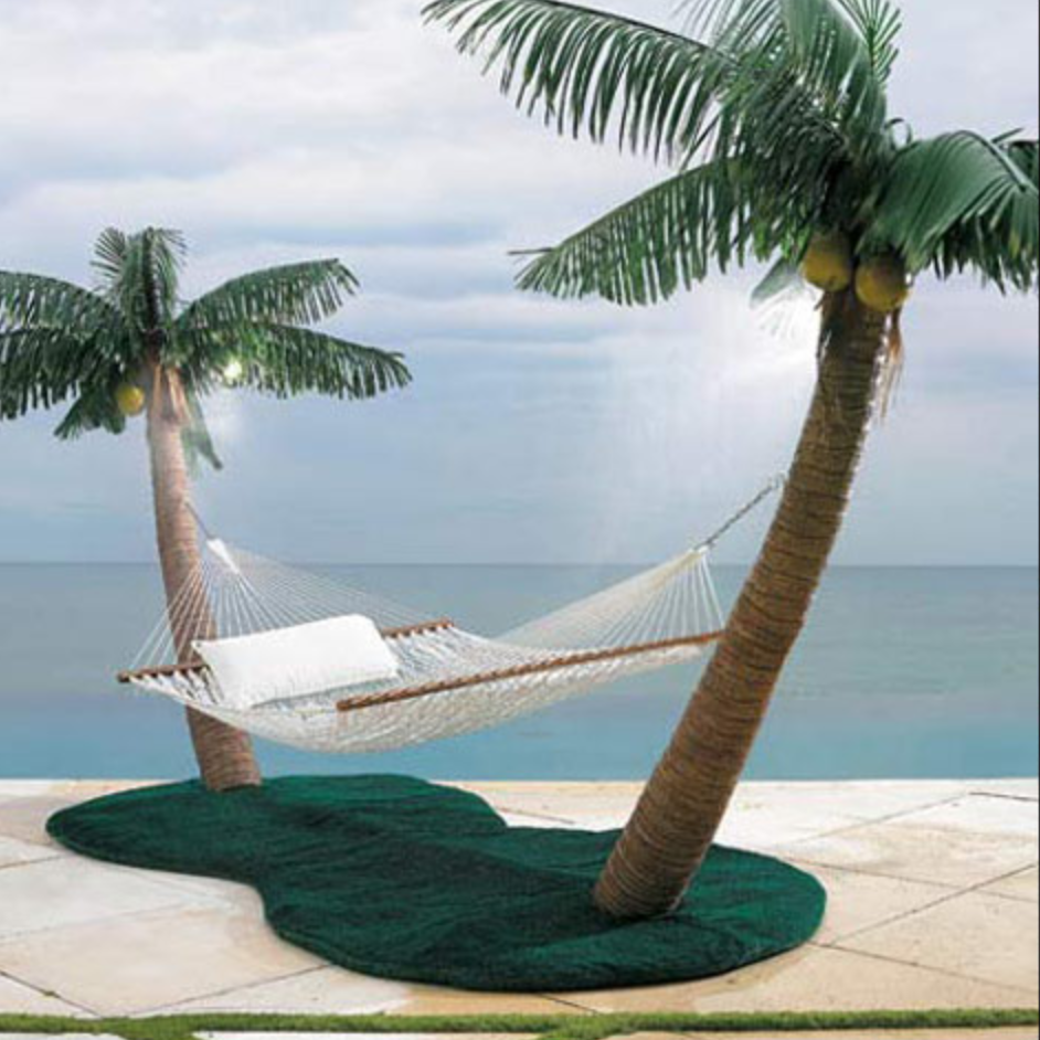 palm tree hamock