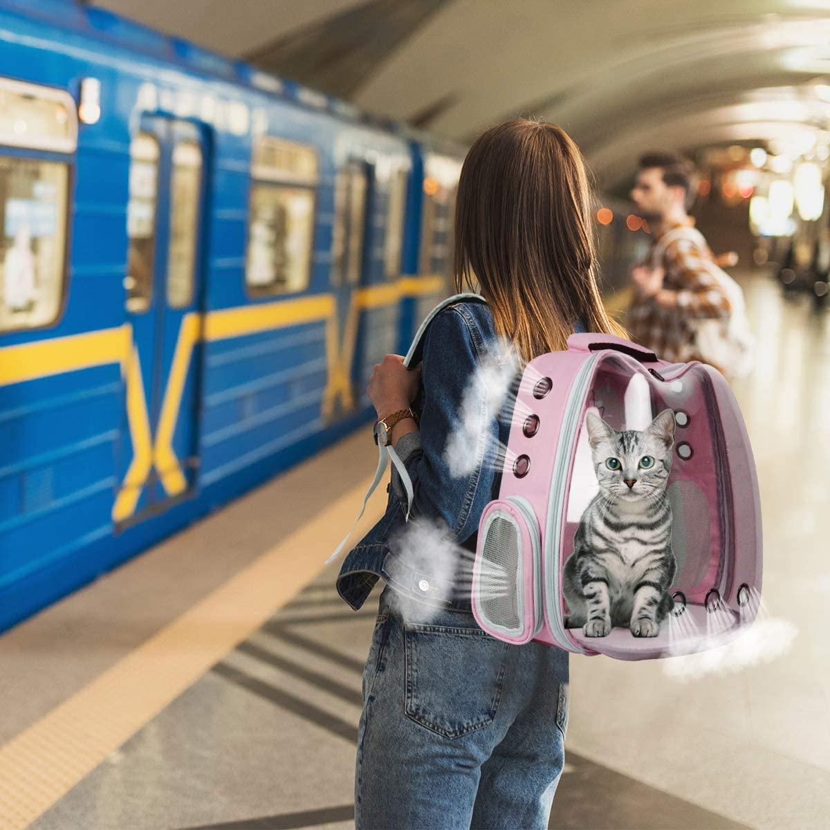upet backpacks